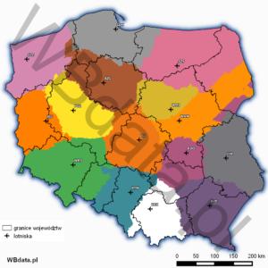 Mapa obszarów o najkrótszym czasie dotarcia do lotnisk (closest point)