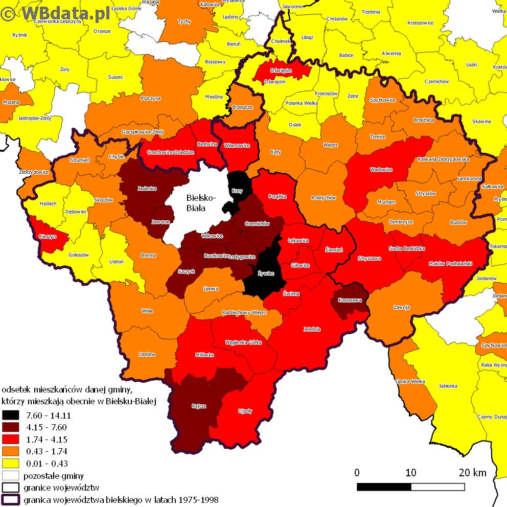 Mapa przedstawia odsetek mieszkańców danej gminy, którzy mieszkają obecnie w Bielsku-Białej na tle dawnego zasięgu województwa bielskiego.